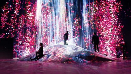 One of the exhibitions at Tokyo's Mori Building Digital Art Museum: teamLab Borderless