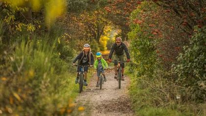 Top 5 family cycling routes
