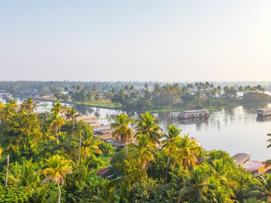 Life on the water: human stories from Kerala's palm-fringed backwaters