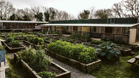 Fforest Farm is a rustic-chic hodgepodge of shacks, lofts and domes scattered along the River Teifi.