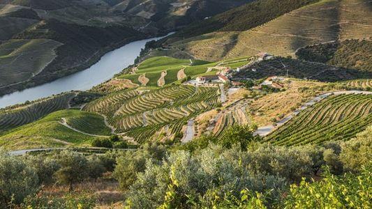Weekender: Douro Valley