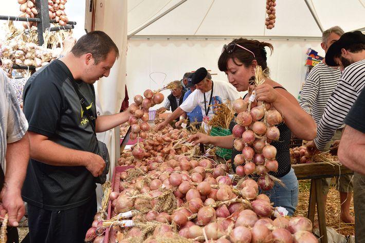 Roscoff Onion Festival.