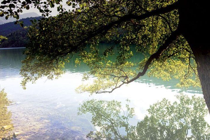 Lake Levico