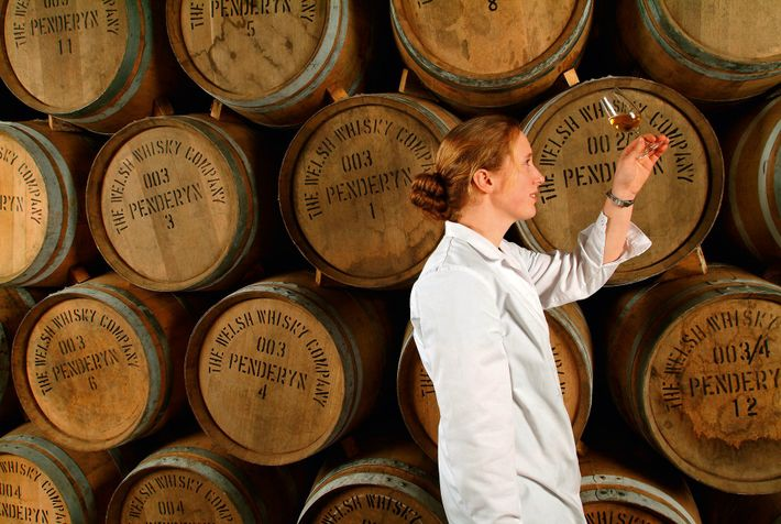 Behind-the-scenes tour at Penderyn Distillery, where you can try its single malt whiskies and juniper-based gins.