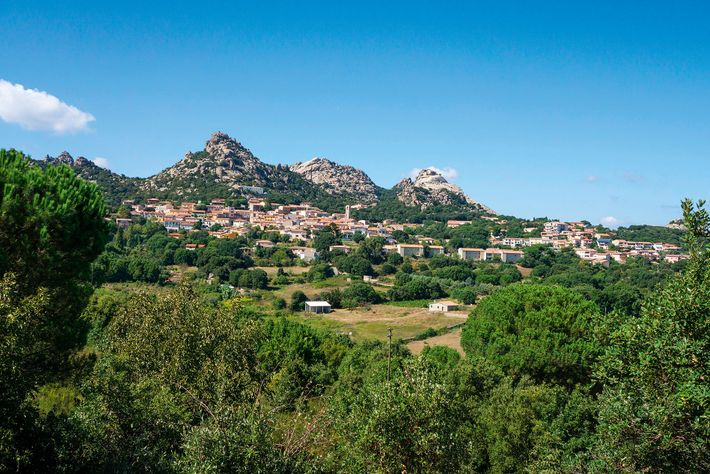 The mountain village of Aggius, around an hour's drive west of Olbia.