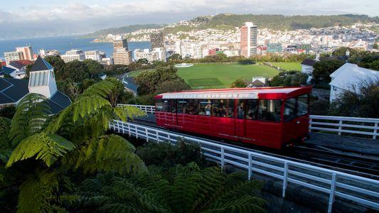 Where the Locals Go in Wellington