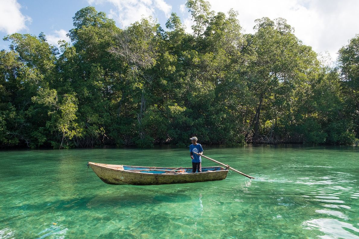 Nearby, Laguna Gri-Gri is a maze of clear, turquoise canals snaking through a thick mangrove forest. ...