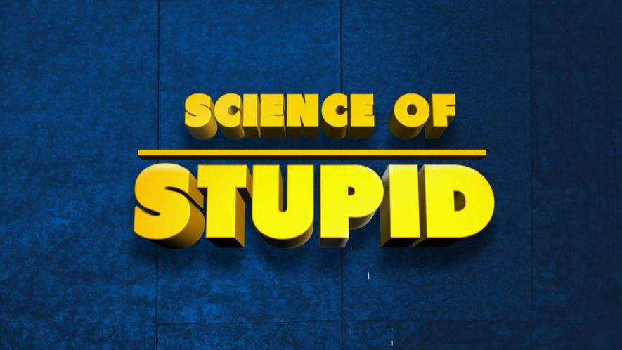 What is Science Of Stupid?