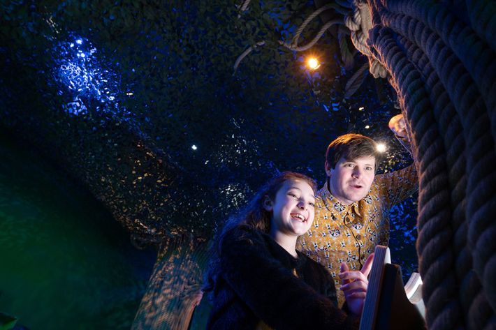 The Whispering Wood, an immersive exhibition at The Story Museum, is an indoor forest of spoken ...