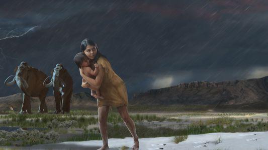 Incredible details of 10,000-year-old trek revealed in fossil footprints
