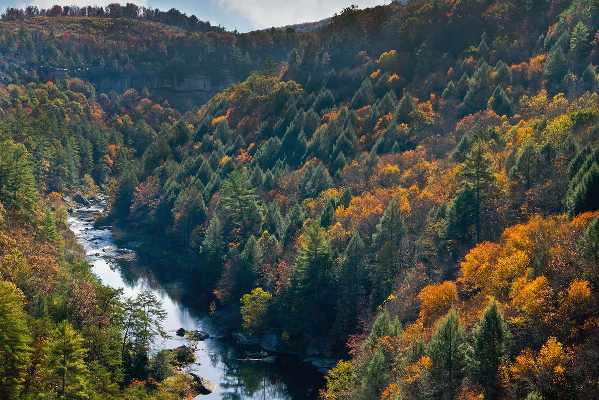 Obed River, Tennessee
