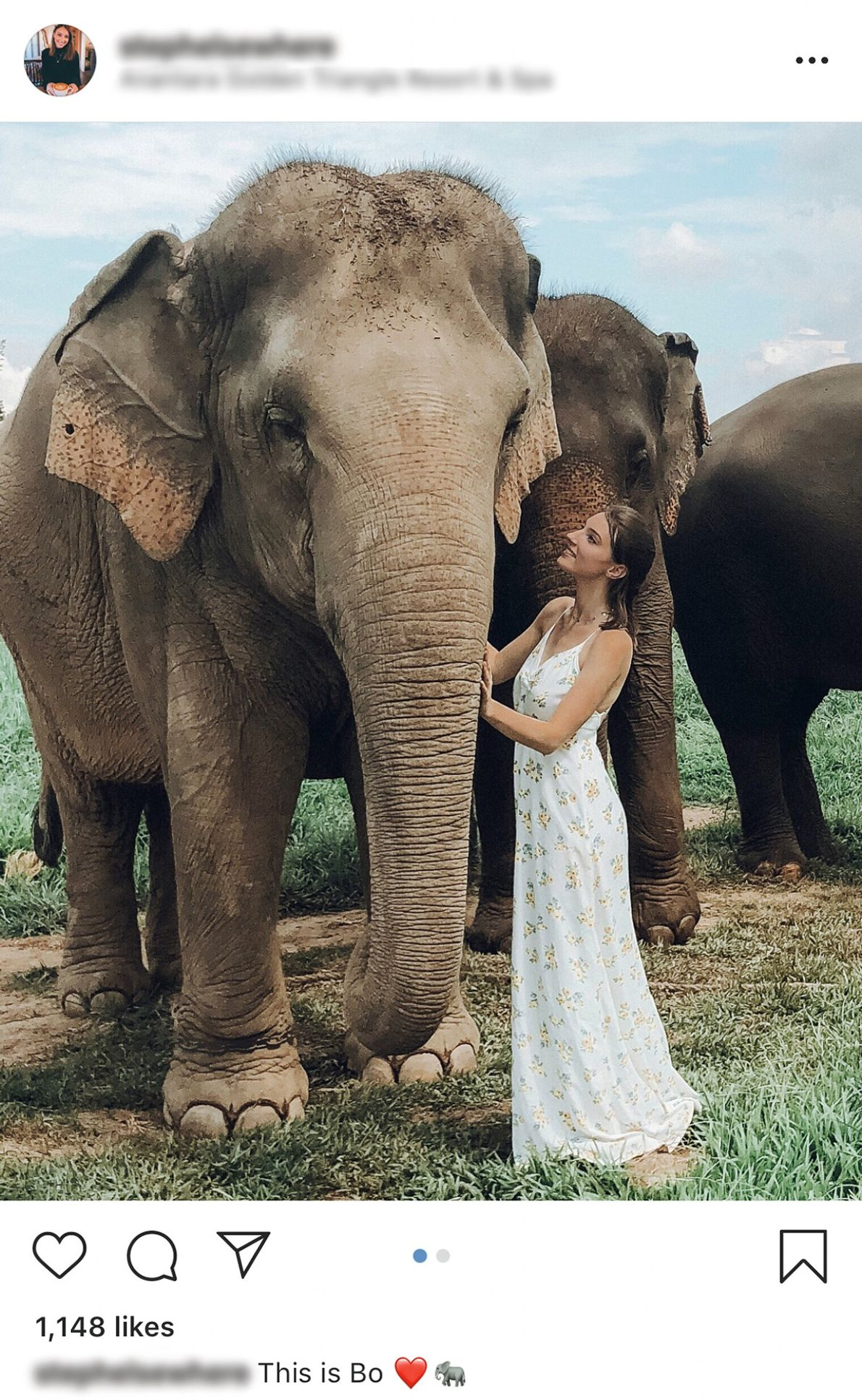 Photos of tourists with captive wild animals abound on social media platforms such as Instagram. With ...