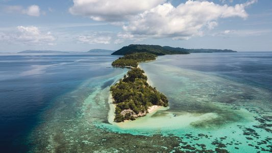 A voyage through Indonesia: tropical reefs and fearless free-divers in the eastern isles