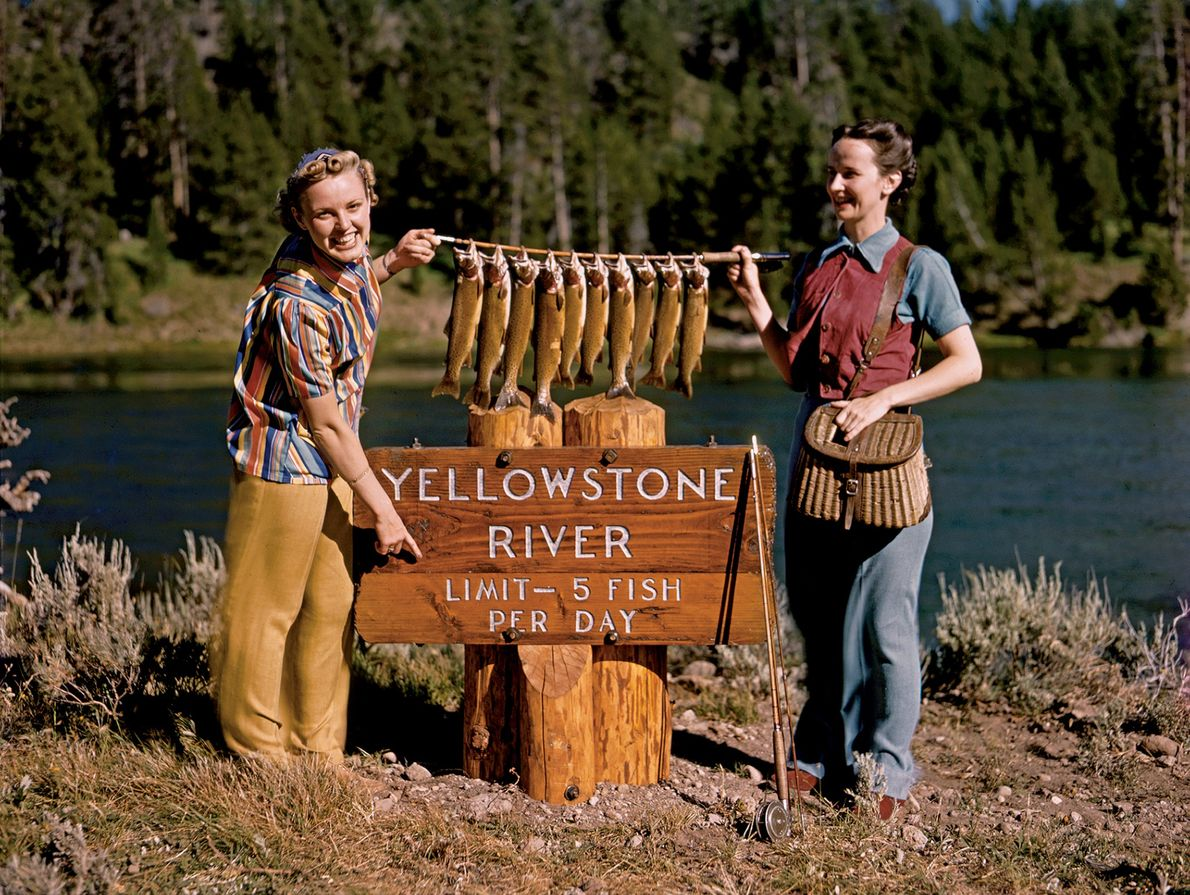 PRE-1940, YELLOWSTONE | Two fishing enthusiasts show off their haul of native Yellowstone cutthroat trout at ...