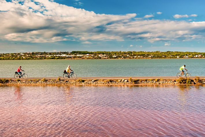 Visiting the Ses Salines d'Eivissa i Formentera Natural Park is the best way to discover the ...