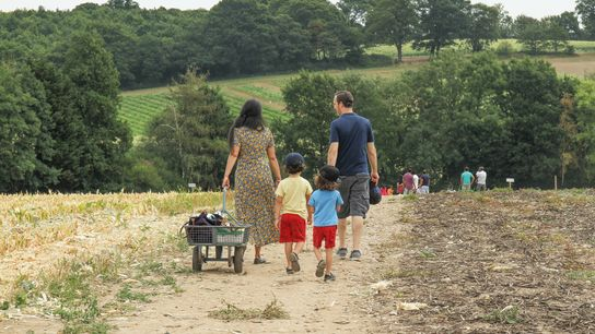 A family at Parkside Farm, apick-your-own place on the northern edge of London.
