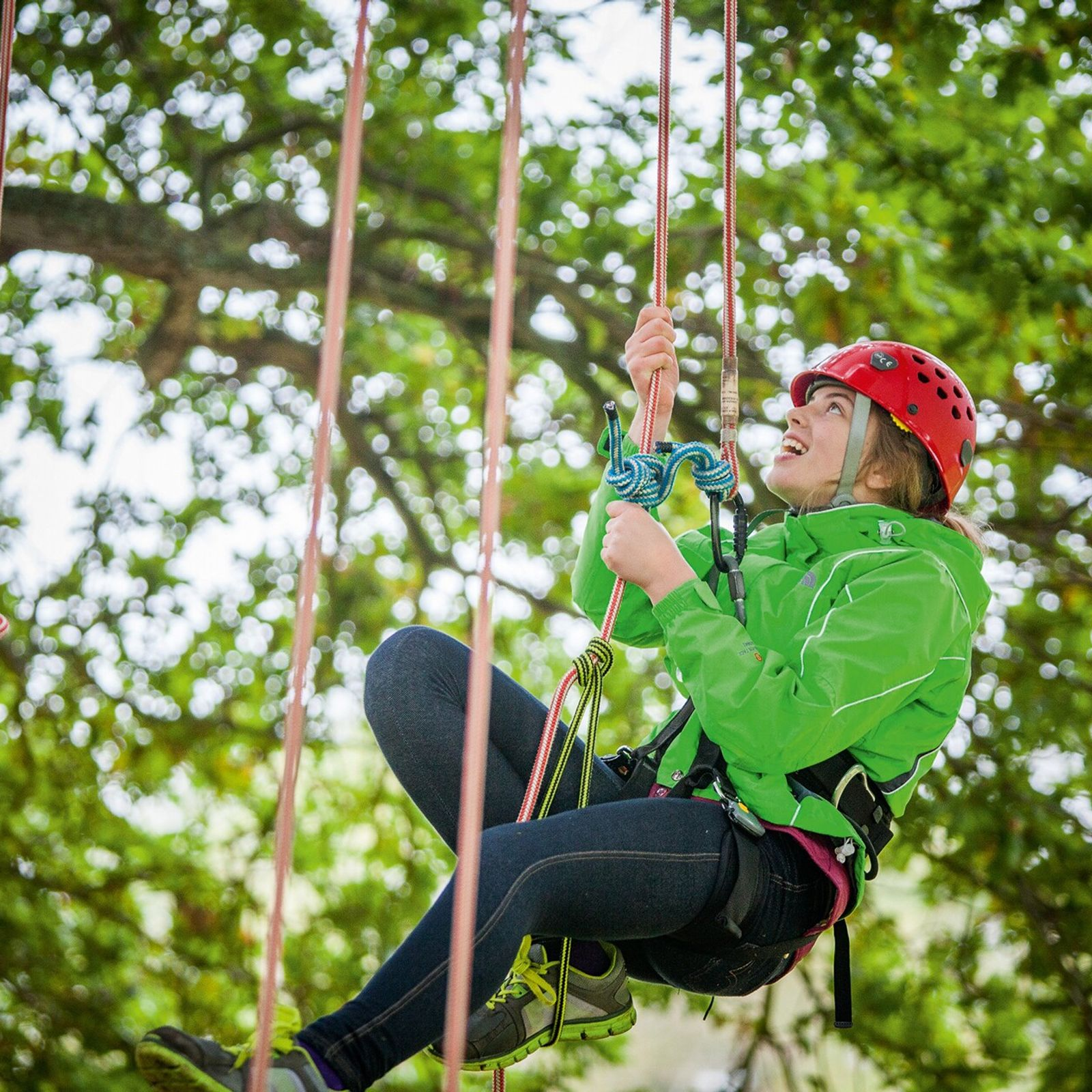 Goodleaf Tree Climbing, on the Isle of Wight,uses ropes, harnesses and safety helmets to allow you ...