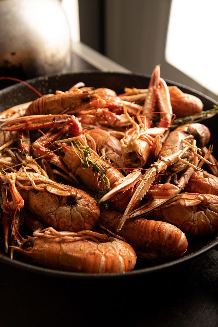Langoustines are best enjoyed pan-fried in butter with whole garlic cloves and plenty of pepper and ...