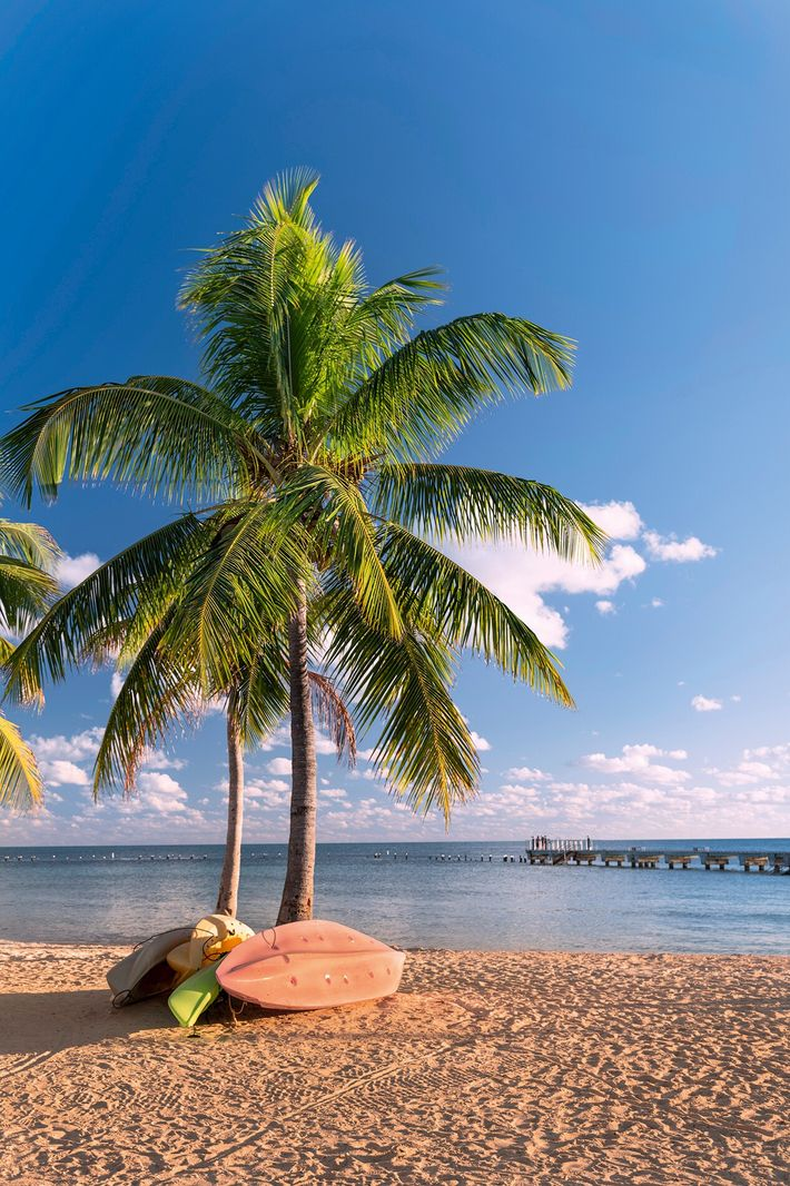 Smathers Beach, with white sand and palm trees, isthe largest public beach in Key West.
