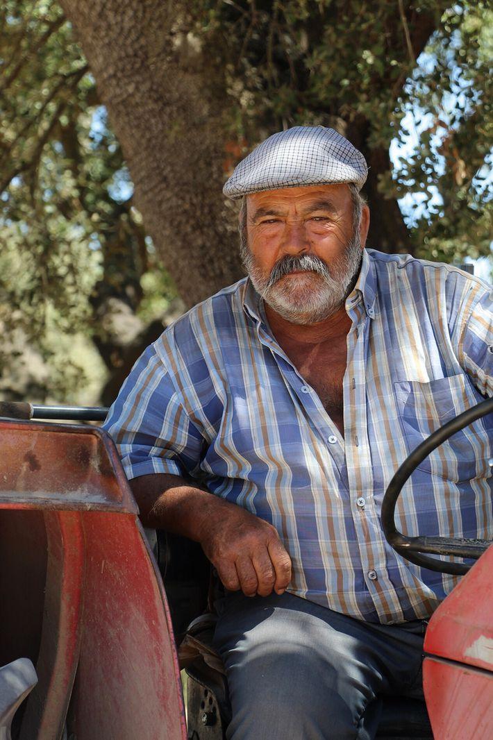 Black pig farm worker Manel Maria.