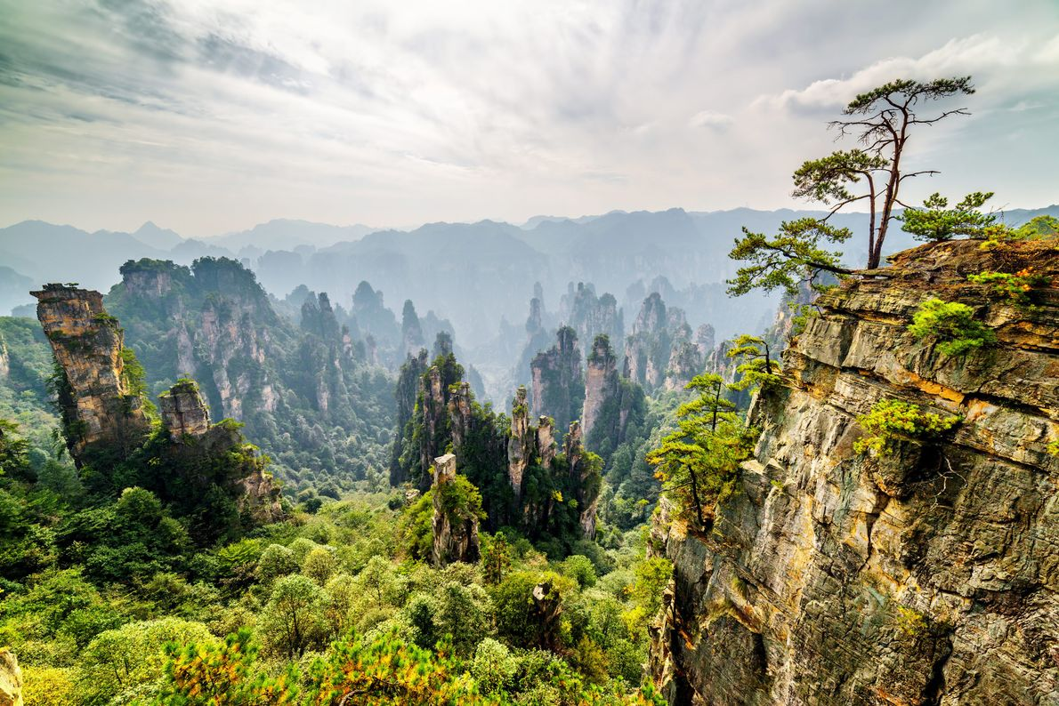 This dramatic area in China's Hunan Province is dominated by more than 3,000 narrow sandstone pillars …