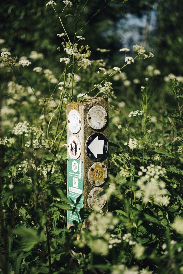 A waymarker in the countryside outside Ross-on-Wye, crossed by trails including the John Kyrle circular walk, ...