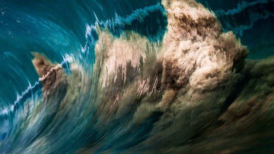 Incredible Underwater Images Taken by You