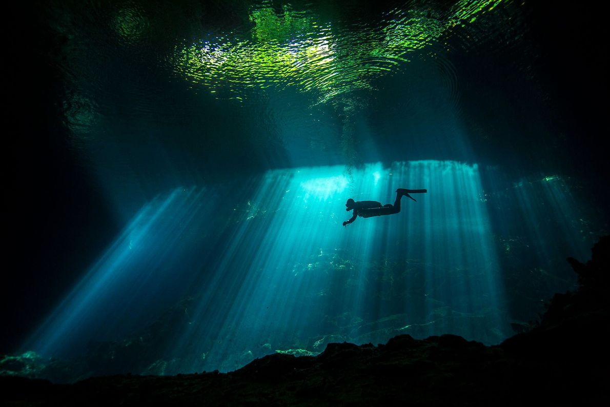 """A shaft of sunlight illuminates a diver swimming in a cenote. """"When you dive in a ..."""