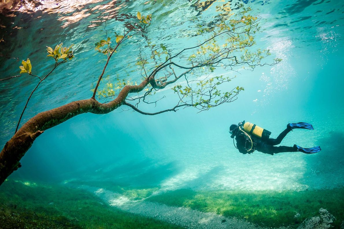 "Each spring, snowmelt raises Grüner See (""green lake"") by around 30 feet, flooding its surroundings and ..."