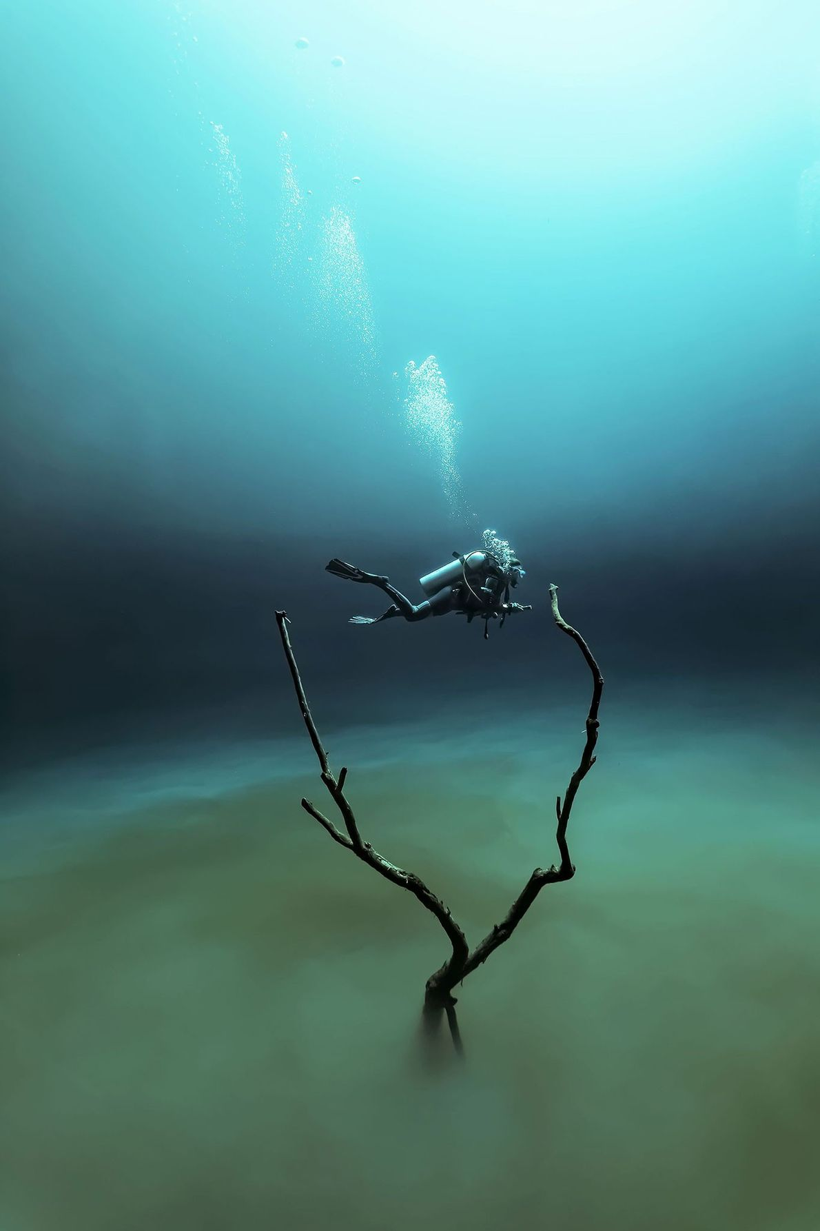 """When you dive Cenote Angelita, explains Fabrice Guerin, """"the light goes from green to blue, creating ..."""