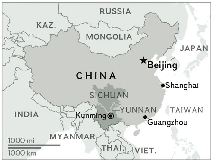 Yunnan and Sichuan provinces are the main sources of tea in China.