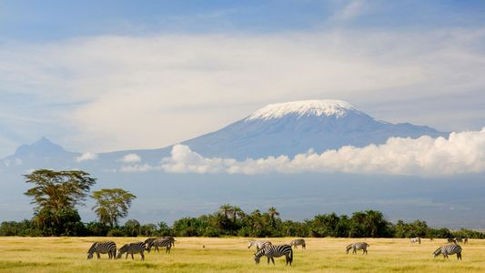 8 Easy Tips Your Kilimanjaro Guide Forgot to Tell You