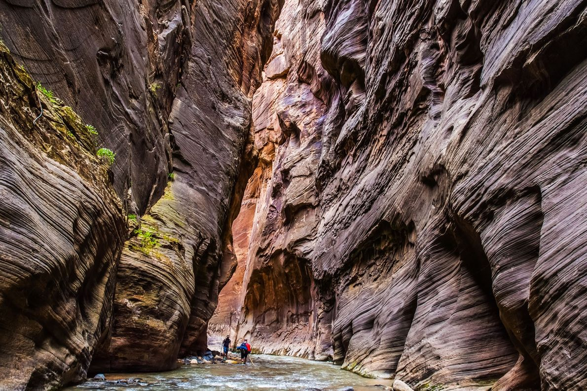 Zion National Park, United States