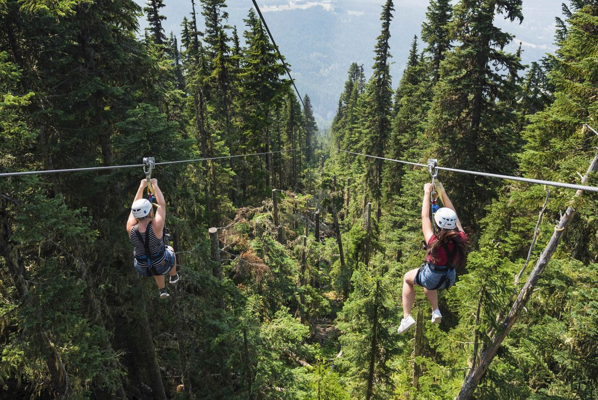 Ziplining is the perfect adventure for anyone who loves scenery, action and an adrenaline-pumping good time.